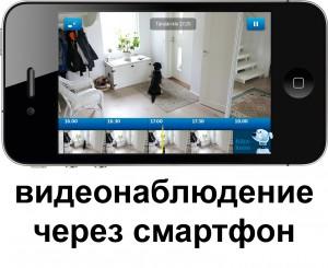 el_vahtilive_iphone_aikakone_koira